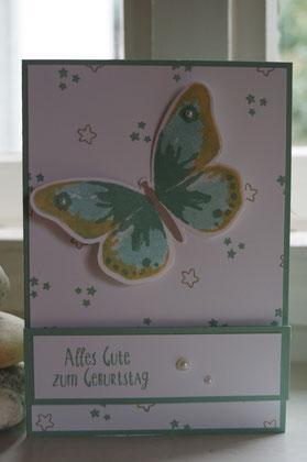 SU-Schmetterling in minzmakrone - Patricia Stich 2015