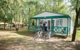 Camping Sites & Paysages  Les Saules à Cheverny - Loire Valley - Les chalets tout confort