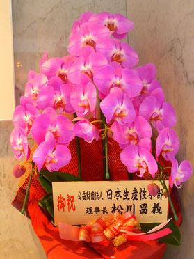 いとこの日本生産性本部理事長 松川昌義氏からのお花 きれいです