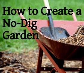 "How to change to ""No dig gardening"""