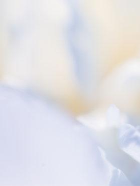 energeticienne guerisseur 65 evasion et bien etre lannemezan centre de bien etre et esthetique lithotherapie praticienne et enseignante reiki lahochi soin energetique medium cartomancie energies sonotherapie relaxation meditation personnes agees detente