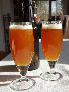 Bier unseres ersten Braugangs nach drei Wochen Flaschenreifung
