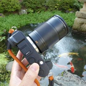 leica CL+Leica tl 60mm macro