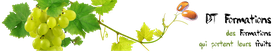 Vue aérienne Jardin du Moulin  Chéneché - APIzone
