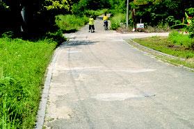 舗装から約30年経過し劣化してきた竹富島一周道路=28日、西桟橋周辺