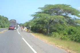 Una de las familias al lado de la carretera