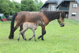 Mutter und Tochter im Gleichschritt