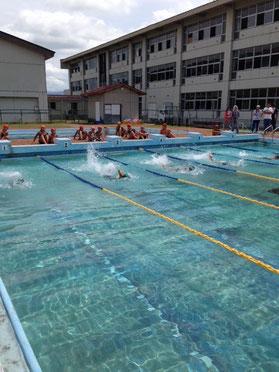 校内水泳大会 力泳の風景
