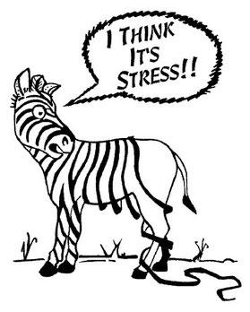 """Traduzione: """"Credo che sia stress!!"""""""