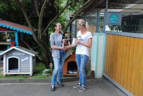 Info-Abend Tierkommunikation Nina Folle Großwenkheim www.mit-tieren-leben.de Spendenübergabe Tierheim Wannigsmühle