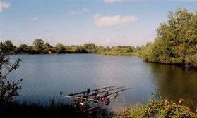 pêche - Baie de Somme - étangs