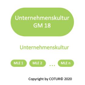 Leadershape by COTUR® - Unternehmenskultur -  Grundlagen Management