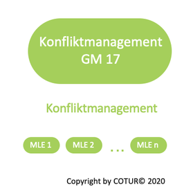 Leadershape by COTUR® - Konfliktmanagement -  Grundlagen Management