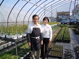 南沢 篠宮 英一さん(花農家)