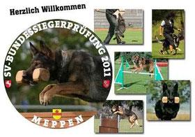 Bundessiegerprüfung