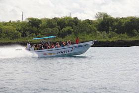 Schnellboot zur Insel Saona