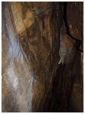 Grotta della Forca IV