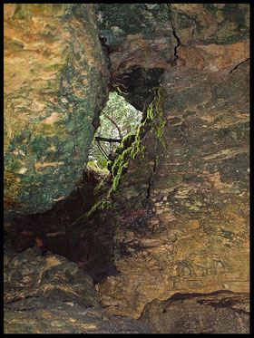 Grotta dei Muschi