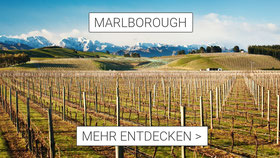 Marlborough entdecken