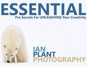 The basics in photography free ebooks and PDF  - Photos -