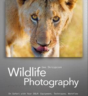 Learn Wildlife Photography eBook