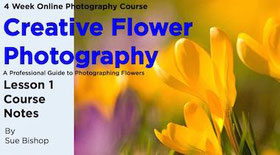 Flower photography course ebook.