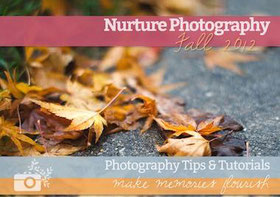Nurture photography ebook cover.