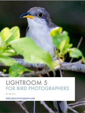 lightroom pdf ebook