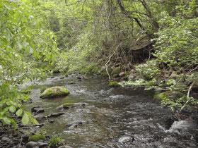 川幅は2~5m位。これ位あれば十分攻められる。