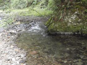 細い流れが岩盤にあたり筋の向きを変えるポイント