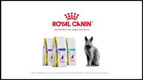 Spots Royal Canin España. Locuciones
