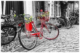 Vélos de Ville/City bikes