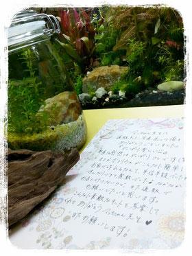 嬉しいお手紙ありがとうございます!!