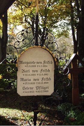 Frisch, Karl Ritter von (1886-1982)