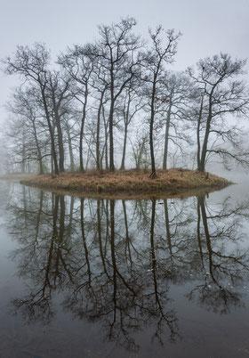 Insel im Nebel