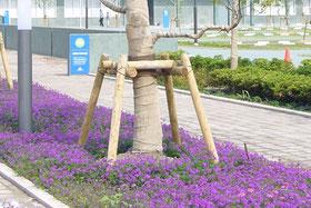 樹木支柱 販売 近畿 関西 阪神 中谷産業株式会社