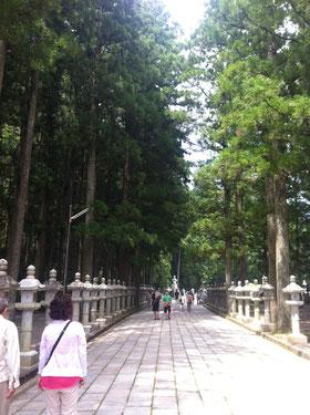 この道を歩いて奥ノ院まで行ってきました。