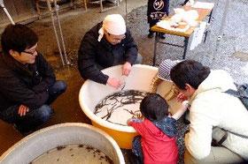 どぜう 利根川産 飼育もおもしろいよ。