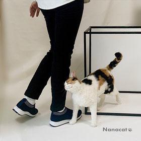 鑑賞者の足に頭ごっちんしている羊毛フェルトの三毛猫の写真
