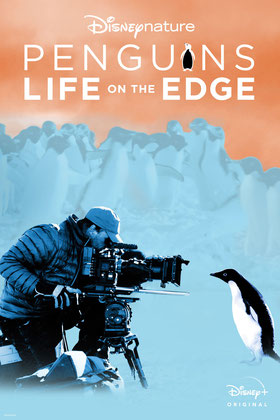 Penguins Life On The Edge