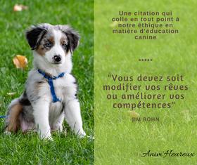 Animheureux - éducation canine méthode positive