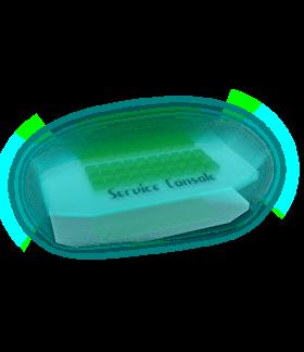 Service Console