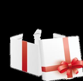 Geschenk Gutschein für Bogenbau Workshop und intuitives Bogenschießen