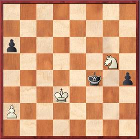 Roth - Mauelshagen: Nach 55. ... Kf4 56. Sh3+ Kg3 57. Sg1 Kf2 58. Sh3 wurden die Punkte geteilt
