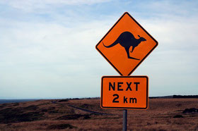 Känguru, Australien, Verkehrsschild