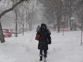 Wintermorgen in Toronto: Im Schneetreiben zur Arbeit.