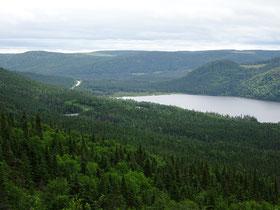 Vom Flughafen Deer Lake nach Rocky Harbour im Gros Morne Nationalpark fährt man gut 70km durch den Wald.