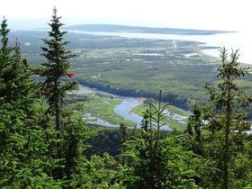Talblick während einer Wanderung auf einem Hiking-Trail im Cape Breton Highlands National Park in Nova Scotia.