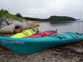 Kajak im Terra Nova Nationalpark: Manche Teile des Parks lassen sich am besten beim Paddeln erkunden.