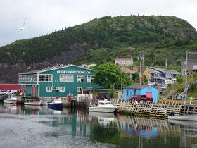 Urlaub in Neufundland: Die Brauerei von Quidi Vidi.